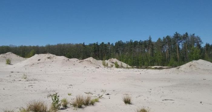Пустеля у Клесові