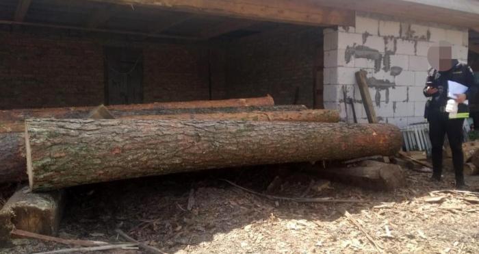 Вирубана деревина