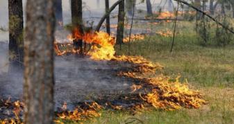 Жителів Маневиччини закликають дотримуватись правил пожежної безпеки