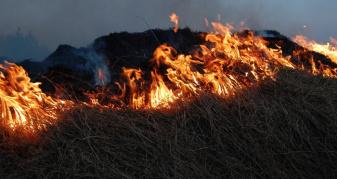 На Закарпатті –  висока пожежна небезпека