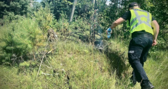 Дим із лісу помітили патрульні