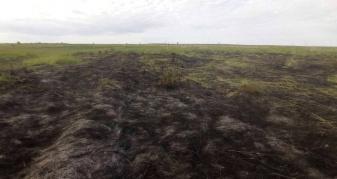 У Городищі чоловік підпалив суху траву біля церкви