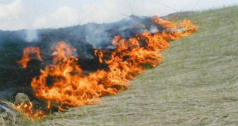 Пожежа на Дубенщині