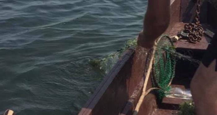 На Пулемецькому озері вилучили браконьєрські сітки
