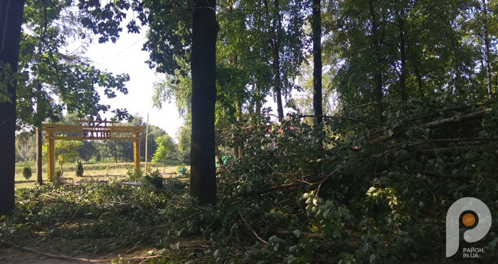 У Ратному негода понищила парк