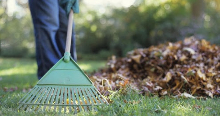 Жителів громади закликають зробити прибирання