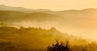 Краса ранкових туманів на світлинах талановитого свалявчанина