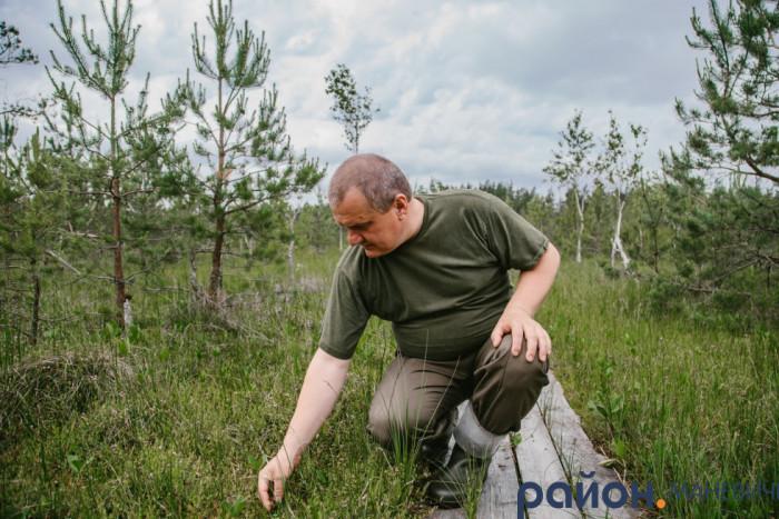 Віталій Деркач знайомить нас з рослинним світом болотних угідь