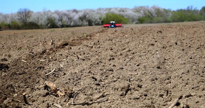 В Україні нараховують до тисячі різновидів ґрунтів. Фото Андрія Романцова