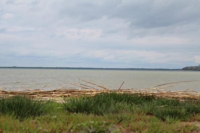Озеро Світязь. Фото Анни Корнієнко